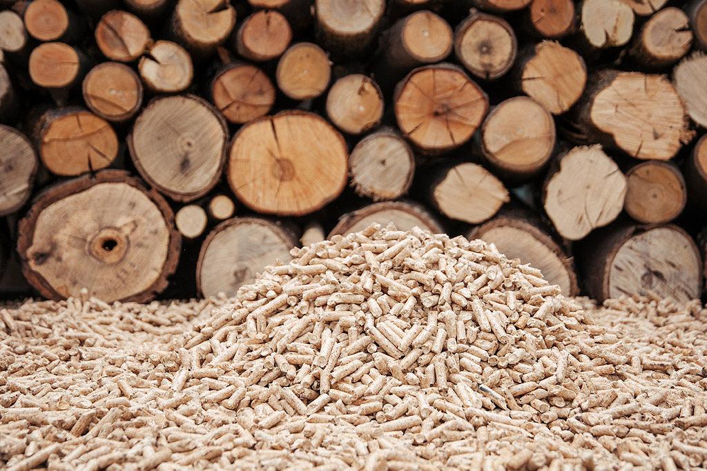 Calentar la vivienda casi sin gastar: ahorra con la estufa de leña o de pellet