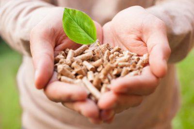 ¿Cómo elegir el mejor pellet? Pequeña guía para una compra consciente