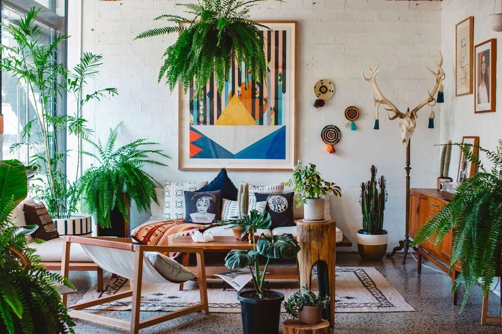 Green corner y urban jungle: lleva la naturaleza a la casa con las plantas de interior